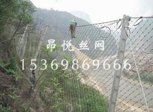 边坡防护网22.jpg