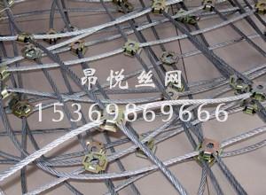 边坡防护网8.jpg