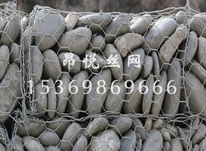 shilongw3.jpg